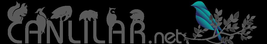 canlilar.net