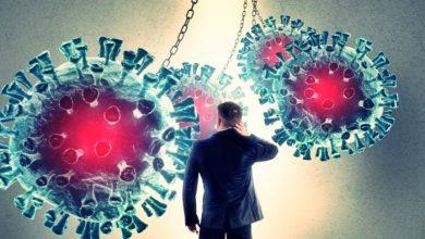 Photo of Virüs Nedir? Virüsler hakkında genel bilgiler